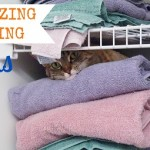 Organizing and Storing Linens