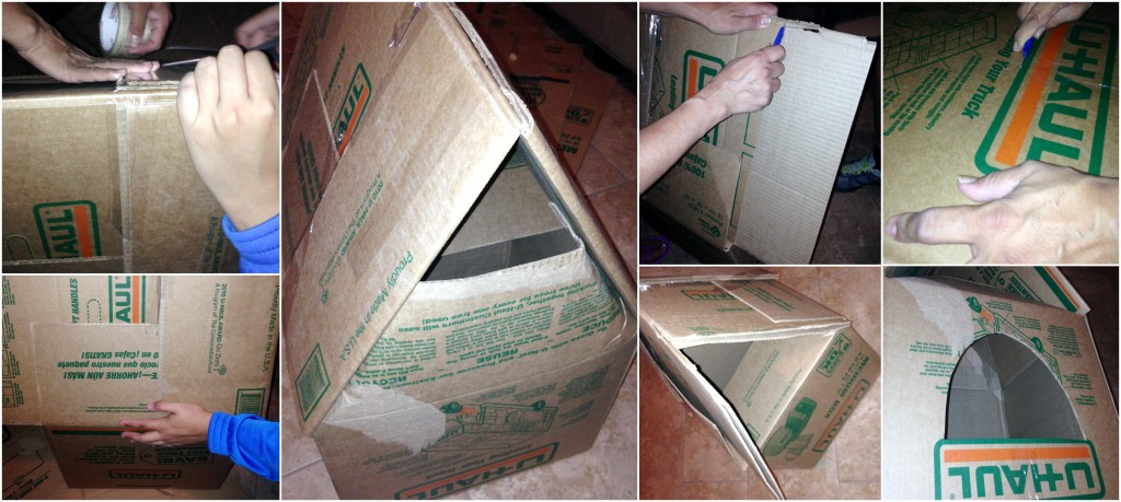 Dog House U-Haul Boxes