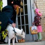 Safely Trick-or-Treating in a New Neighborhood