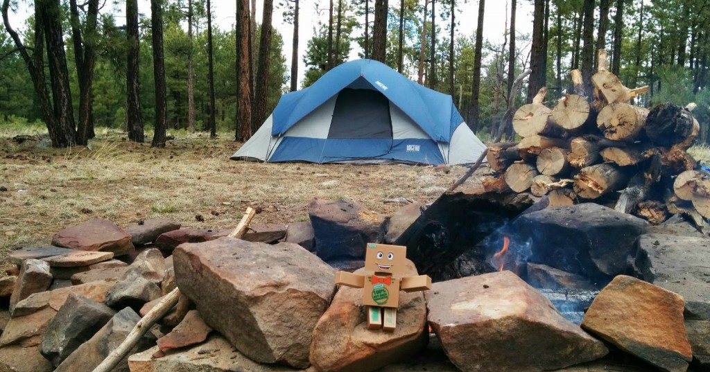 Top Ways to Use Propane While Camping