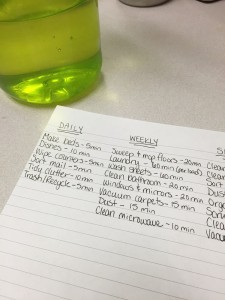 Cleaning Schedule Times
